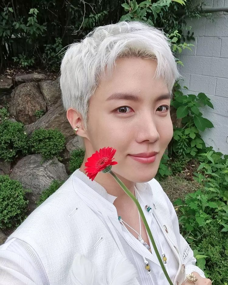 BTS J-Hope Over Flowers