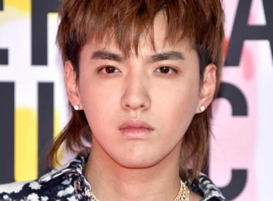 Chinese Insiders Reveal How Severe the Penalty Kris Wu May Face if Found Guilty Following Arrest