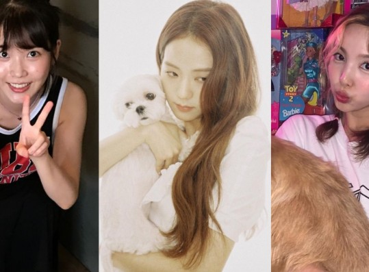 BLACKPINK Jisoo Selected as The Female Idol People Want to Walk a Dog With + See Full List